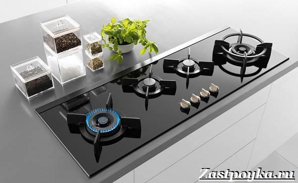 Варочная-панель-встроенное-оборудование-для-современной-кухни-2