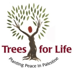 Zatoun Trees for Life