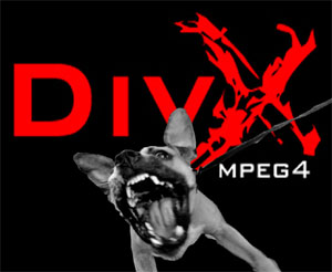 divx.jpg