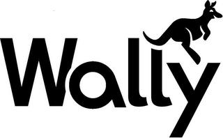dish-wally