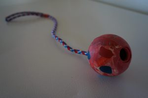 Ball On A String Dog Toy (1)