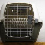 new puppy checklist crate