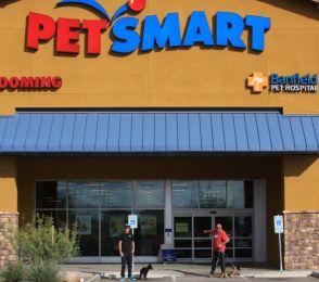 Puppy socialization at Petsmart_01