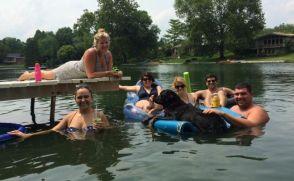 Zauberberg Rottweiler having fun in the water