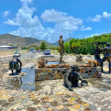 Salt Picker Sint Maarten