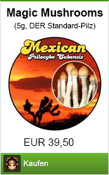 Banner magic mushrooms bestellen im Shayana Drogen Online Shop