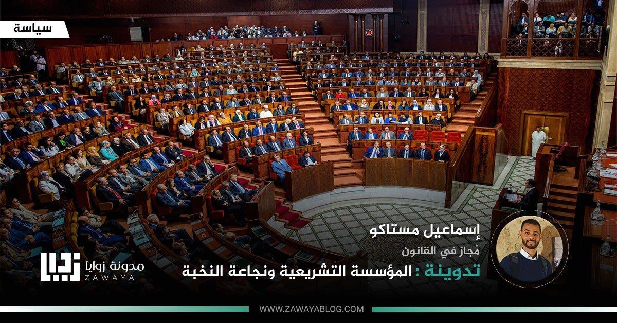المؤسسة التشريعية ونجاعة النخبة