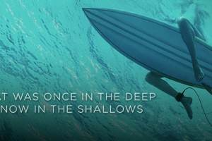 THE SHALLOWS - Trailer and Poster 3