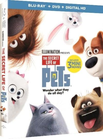 ecret-life-of-pets-dvd