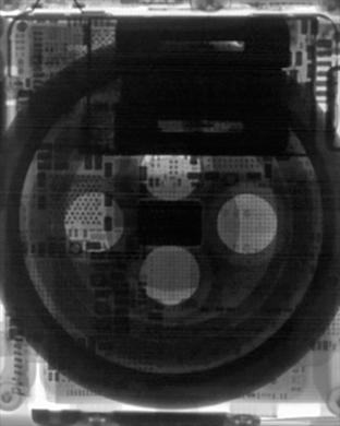 Wallpaper do Apple Watch Series 3 (raio-X)