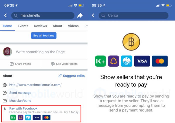 Pay with Facebook