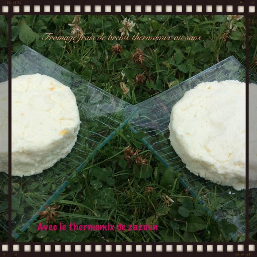 fromage avec le thermomix de zazoun. Black Bedroom Furniture Sets. Home Design Ideas