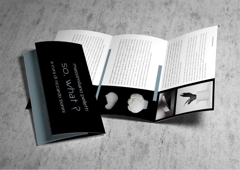 so_what_brochure