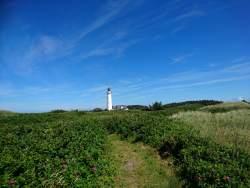 Leuchtturm von Hirtshals
