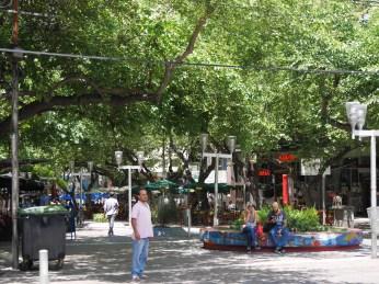ulice centrum Mendozy pełne są drzew, co daje zbawienny cień