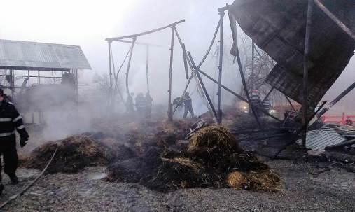 manastirea cucova incendiu (6)