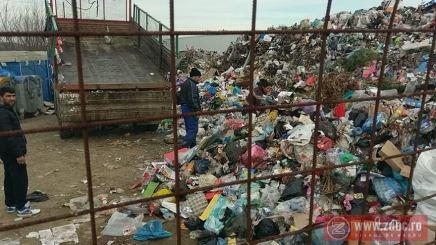 moinesti deseuri gunoi 30 decembrie 2017 (9)