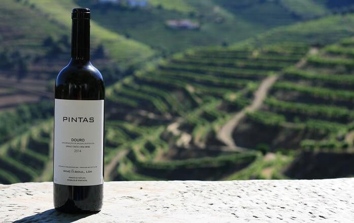 Wine and Soul Pintas