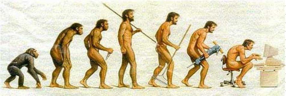 Comunicación en Evolución (1/2)
