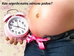 как определить начало родов
