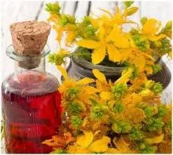 kantarionovo ulje priprema recepta