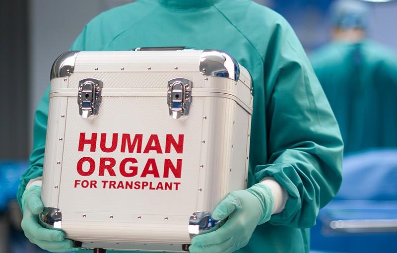 transplantacija jetre