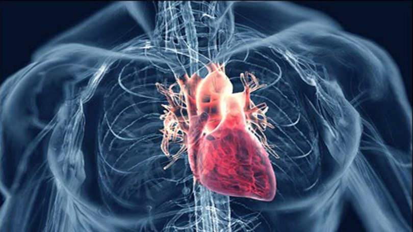 Bolesti srca hipertenzija