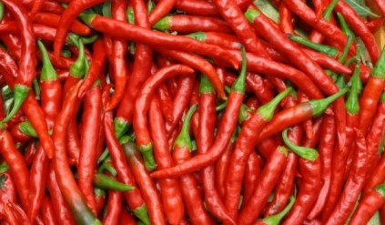 red_hot_chilli