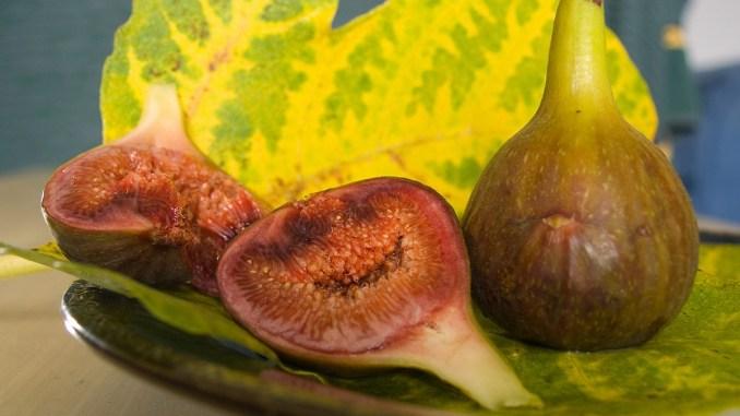 смокини