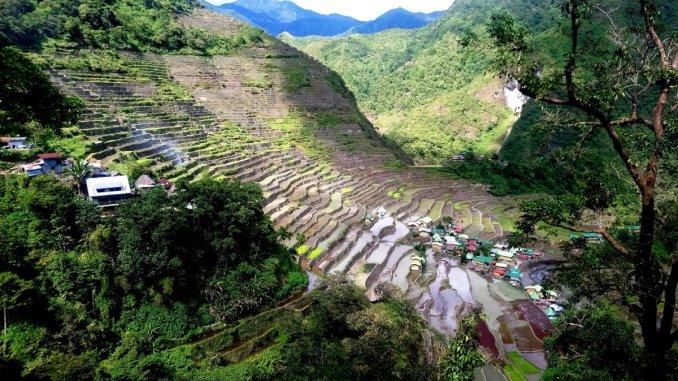 Оризовите полета на Филипините