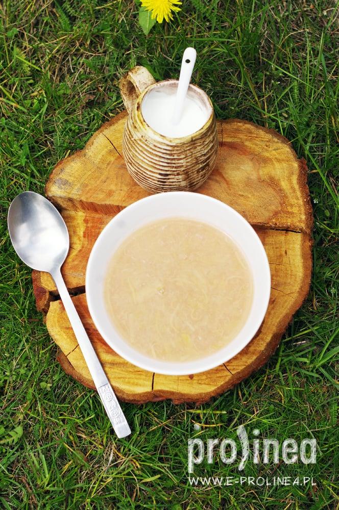 zupa rabarbarowa