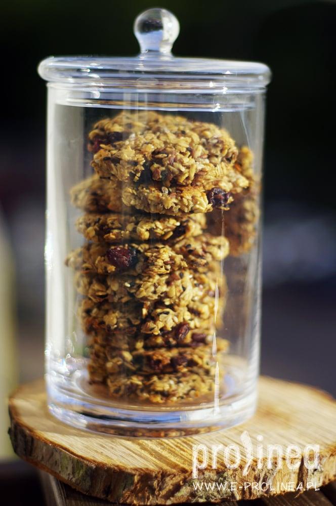 ciasteczka owsiane proste