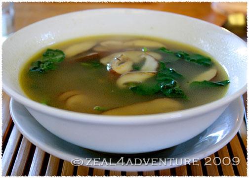 forrest-soup