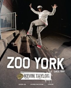 ZOOYORK Kevin Taylor