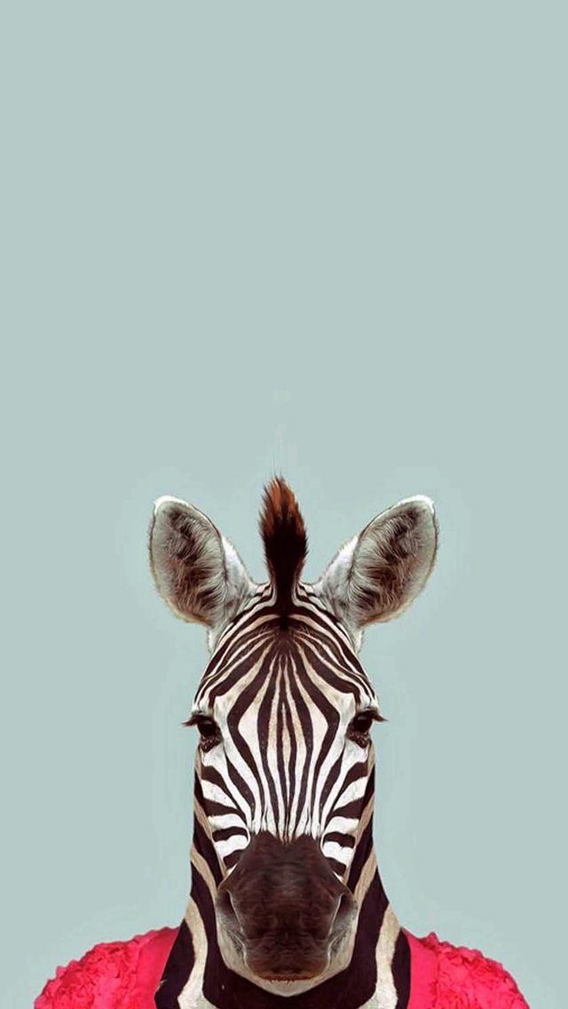 L'art de la Zebrattitude