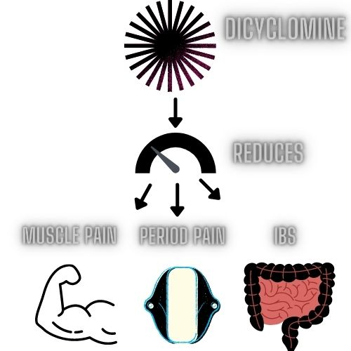 dicyclomine 10 mg for weight loss