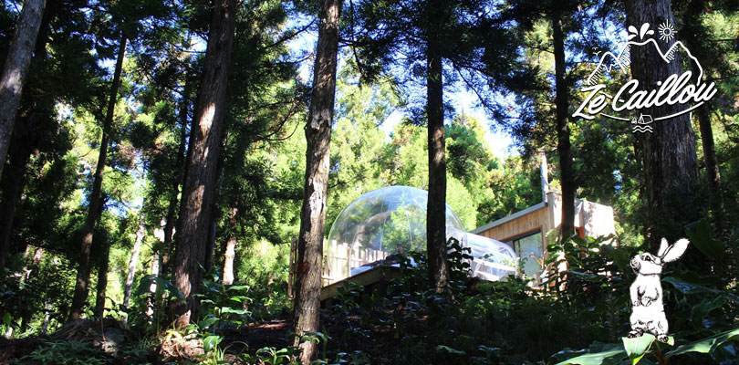 Original lodging in bubble at Les Makes, La Reunion