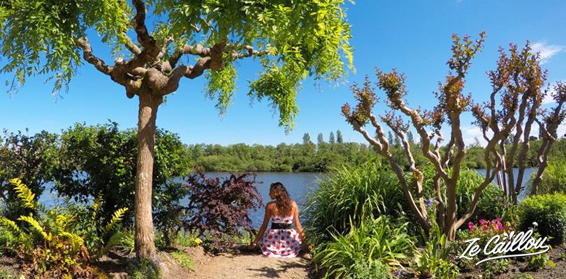 Visiter le jardin fleuri de Mimizan, plantes et fleurs de toutes sortes