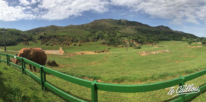 Dormir en van devant le lac du Parque Natural de Cabarcenos et observer des éléphants