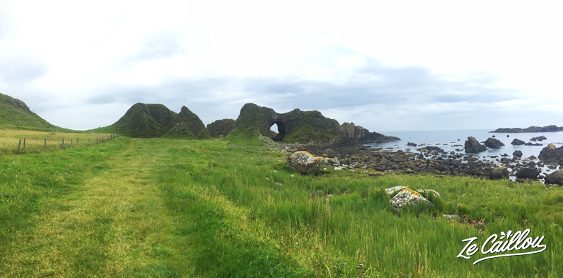 Walk across arches, sheeps' fields and white beach during the giant's causeway hike