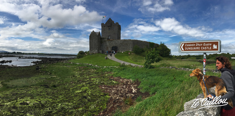 Le château de Dunguaire dans la région de Burren sur la route de Galway
