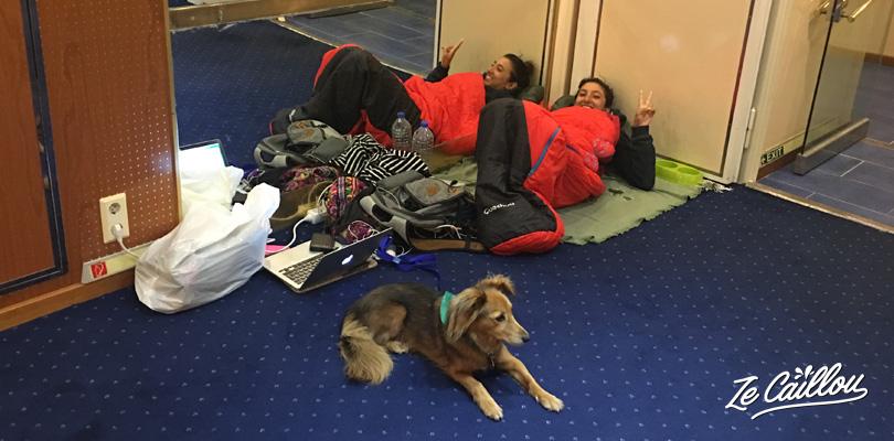 Voyage en ferry en EUrope avec un chien dans les espaces communs du ferry.