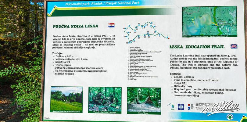 Marche éducative dans le parc national de Risnjak lors de notre road trip en Croatie en van.