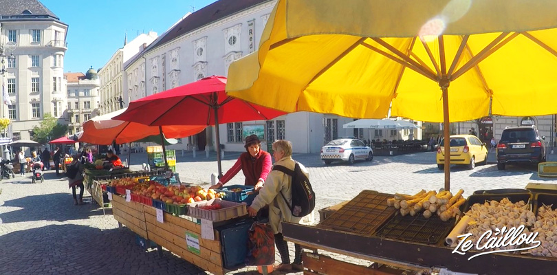 Brno fruits, vegetables and flowers market, when traveling in Czech Republic.