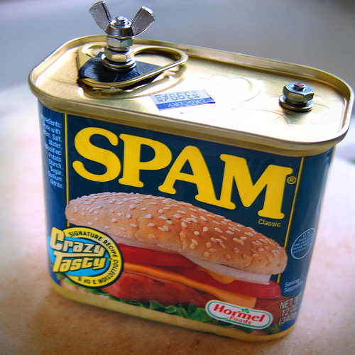 Spam pinhole camera