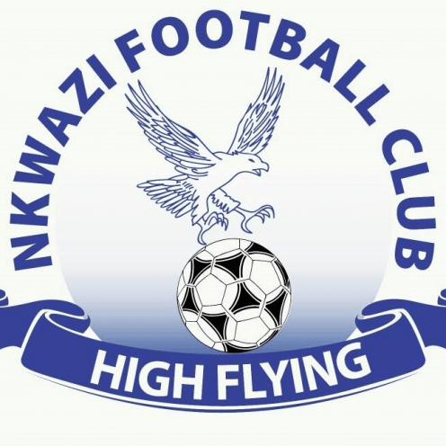 Nkwazi football club logo