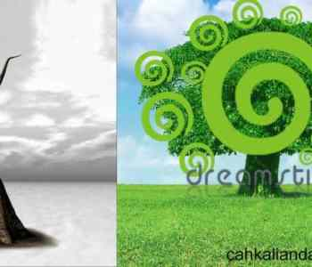 https://cahkalianda.blogspot.com/2015/11/tips-sebelum-upload-gambar-di-dreamstime.html