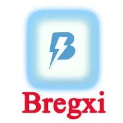 Bregxi iOS 12.3 jailbreak tool  is an easy online jailbreak app installation.