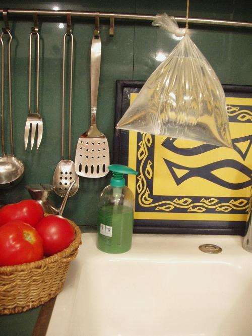 מבריח הזבובים במטבחנו