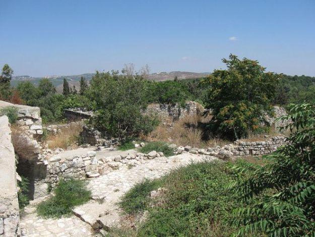 חורבות הכפר הערבי בירעם שנבנה על חורבות כפר יהודי מימי המשנה - ויקיפדיה